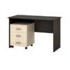 Письменный стол Азарт-1